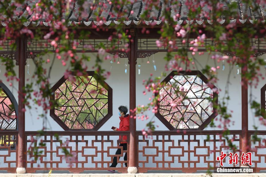 春暖花開畫意江南