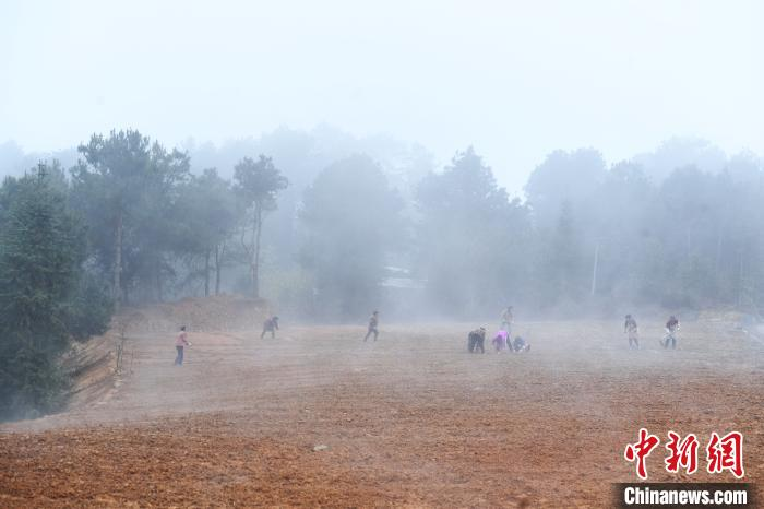 薄霧籠罩山村成風景