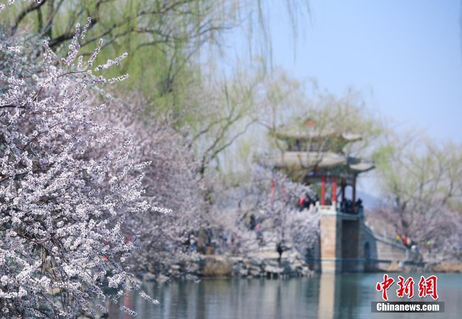 北京颐和园春意盎然