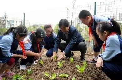 大中小学设立劳动教育必修课 劳动素养将成升学重要依据