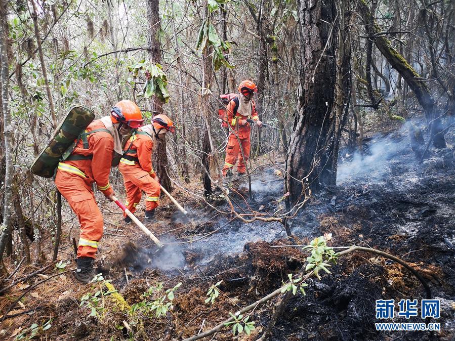 云南玉龙森林火灾明火扑灭 过火面积约40公顷