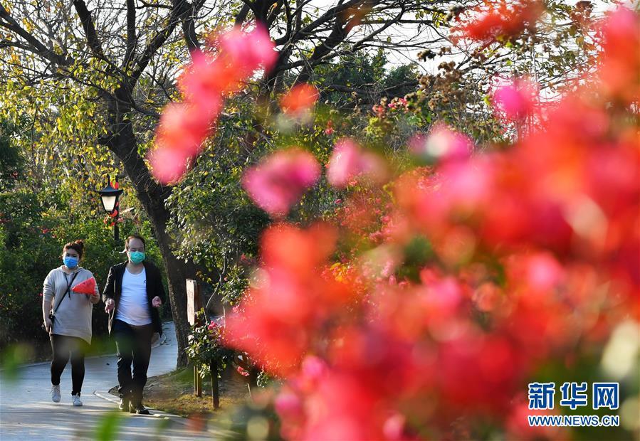 福州:感受春天