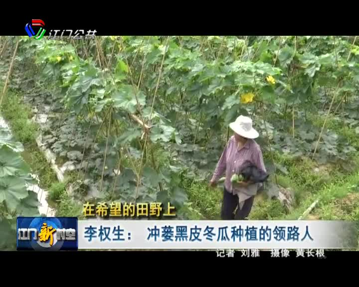 李权生:冲蒌黑皮冬瓜种植的领路人