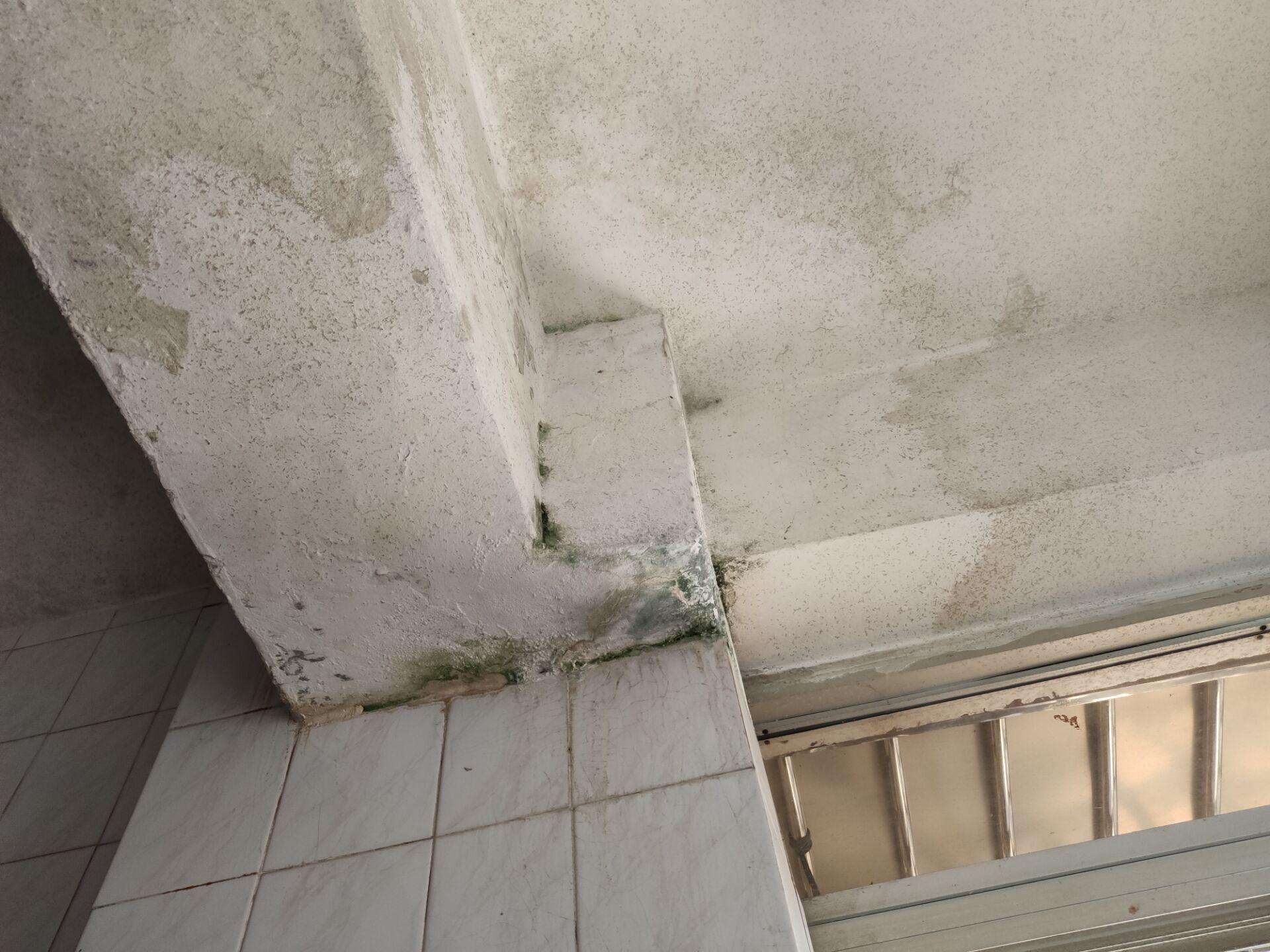 房屋漏水严重 邻居多次协商未解决