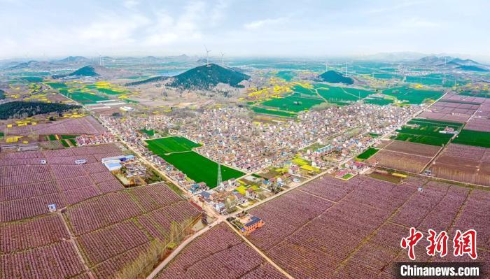 徐州铜山万亩桃花盛开