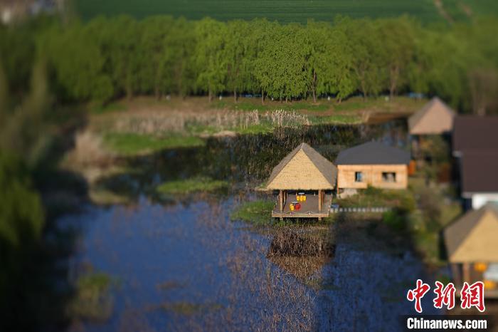 镜头下春和景明白马湖