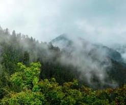 甘肃兴隆山雨后云雾缭绕