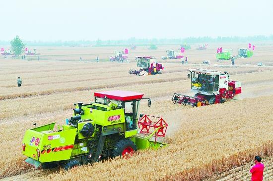全国大规模小麦跨区机收全面展开