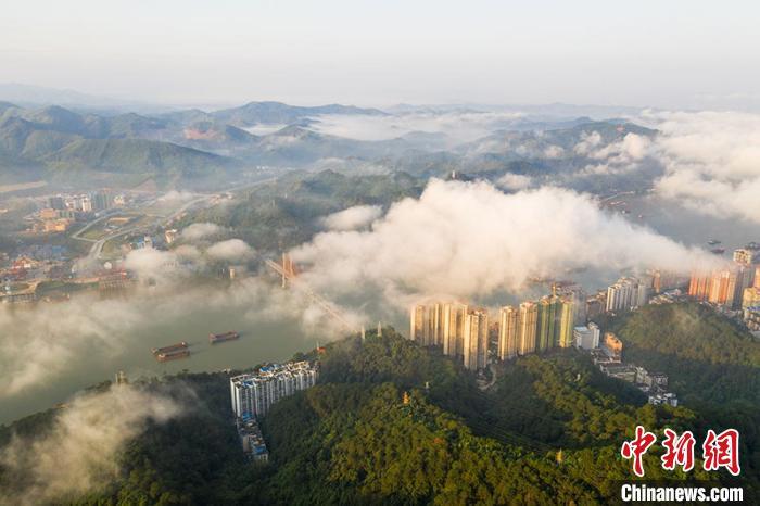 广西梧州出现平流雾