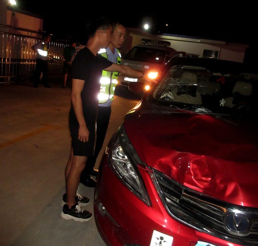 台山一代驾司机被撞身亡 肇事司机醉驾逃逸后自首