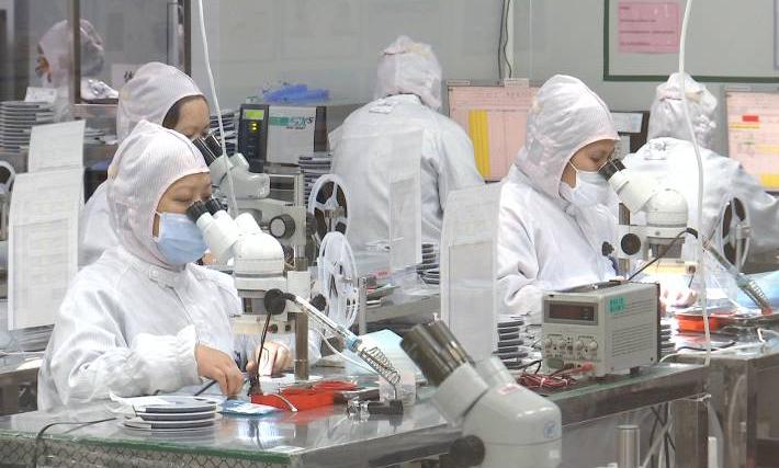 江门政企合力 多家外贸企业逆势增长