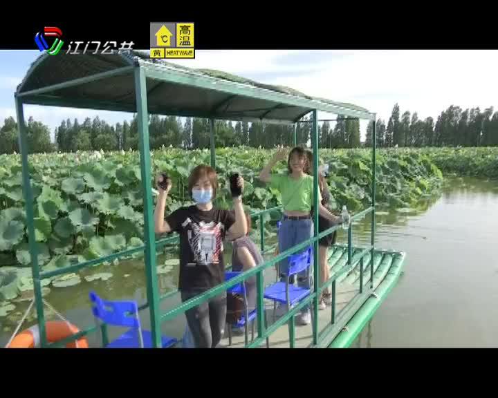 高新区(江海区)发布全免费主题乡村旅游新线路