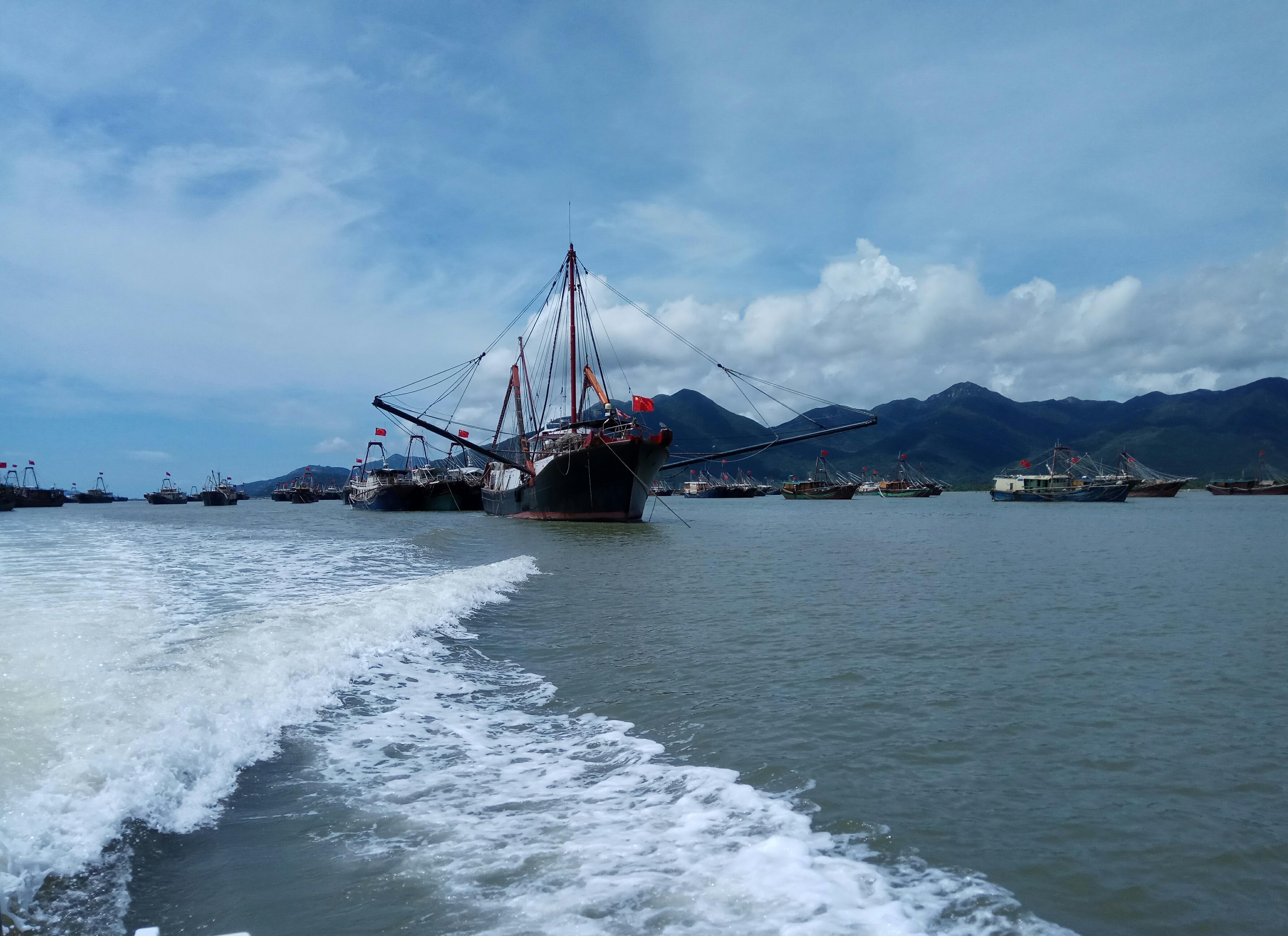 我市2000多艘渔船昨天出海捕捞