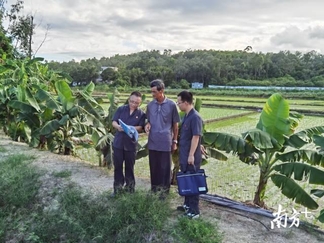 台山法院7天为33名农民追回2年承包款