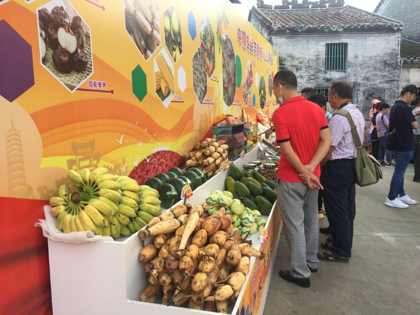 2020年中国农民丰收节新会区专场活动今天举行